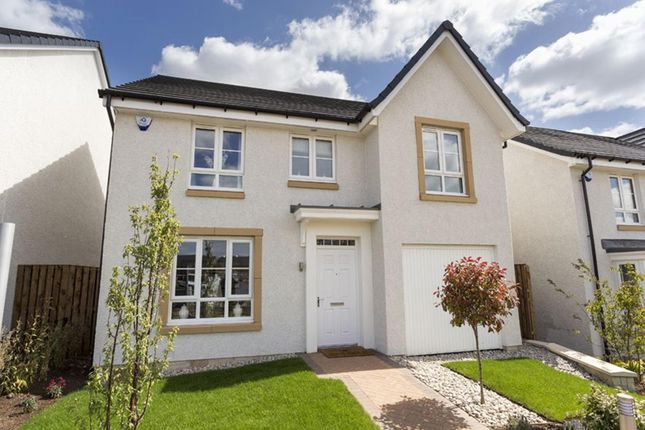 "Thumbnail Detached house for sale in ""Craigievar"" at Glasgow Road, Kilmarnock"