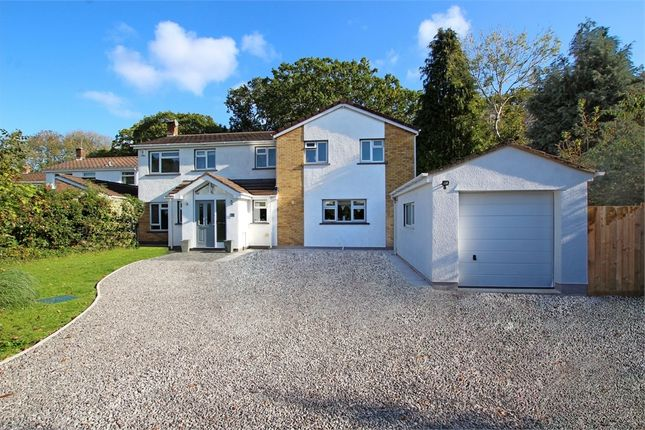 Thumbnail Detached house for sale in Rheidol Close, Llanishen, Cardiff