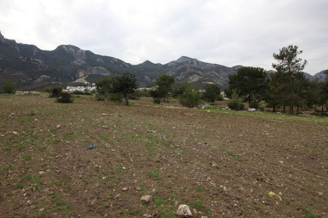 Thumbnail Land for sale in Catalkoy, Kyrenia