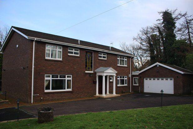 Thumbnail Property to rent in Mill Lane, Swansea