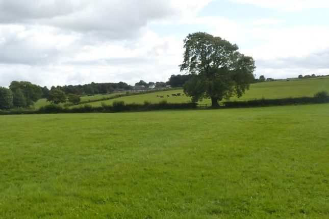 Thumbnail Land for sale in Nr Etherley, Etherley, County Durham