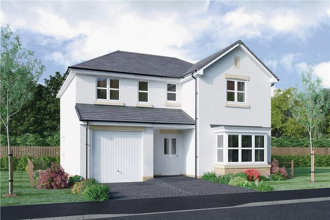"Thumbnail Detached house for sale in ""Lennox"" at Mcdonald Street, Dunfermline"