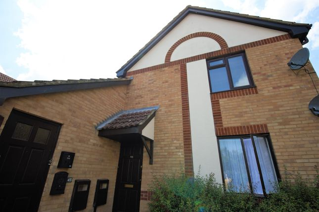 Thumbnail Flat to rent in Pimpernel Grove, Milton Keynes