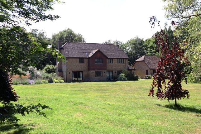 Rear Elevation of Woodchurch, Ashford, Kent TN26