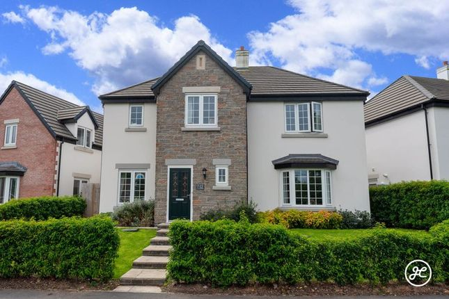 Thumbnail Detached house for sale in Southbrook Close, Otters Brook, Cannington