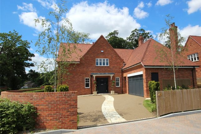 Thumbnail Detached house to rent in Laurimel Close, September Way, Stanmore