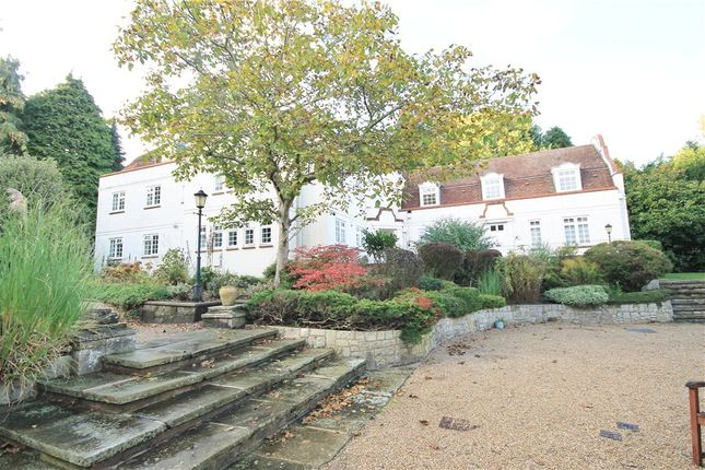 Thumbnail Flat to rent in Ivy Drive, Lightwater, Surrey