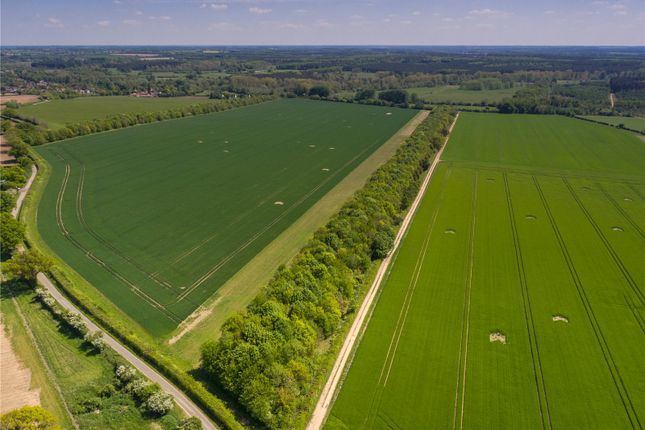 Thumbnail Land for sale in The Street, Bridgham, Norwich