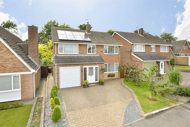 Thumbnail Detached house for sale in Glyndebourne Gardens, Corby, Northamptonshire