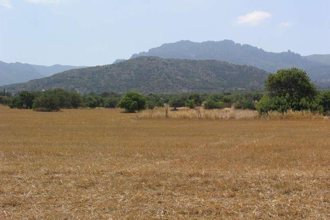 Thumbnail Land for sale in 40 Donum Tatlisu Land, East Of Kyrenia