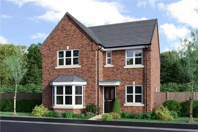 "Thumbnail Detached house for sale in ""Mitford"" at Milby, Boroughbridge, York"