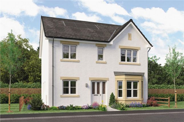 "Thumbnail Detached house for sale in ""Douglas"" at Dalkeith"