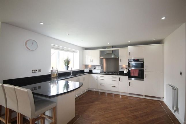 Thumbnail Detached house to rent in Tickford Bank, Widnes