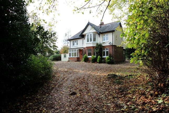 Thumbnail Detached house for sale in Sutton Lane, Ripple