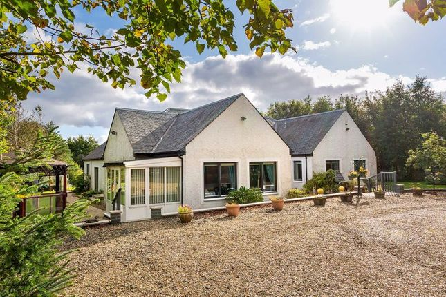 Thumbnail Detached house for sale in Dhorbru, Riverside Lea, Blackburn, Bathgate