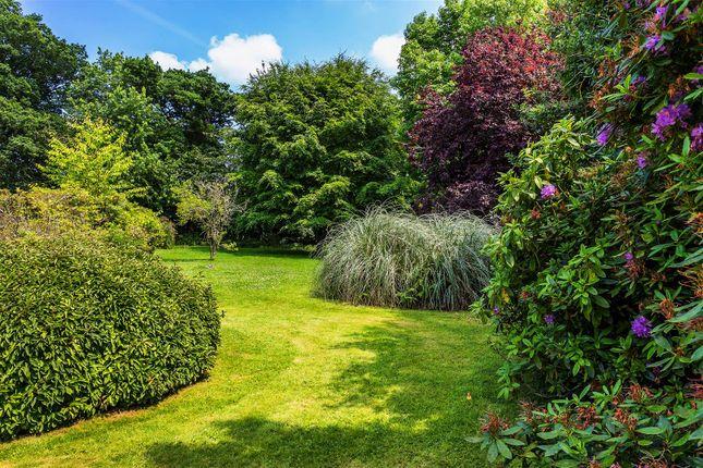 House. Estate Agency Cranleigh Garden
