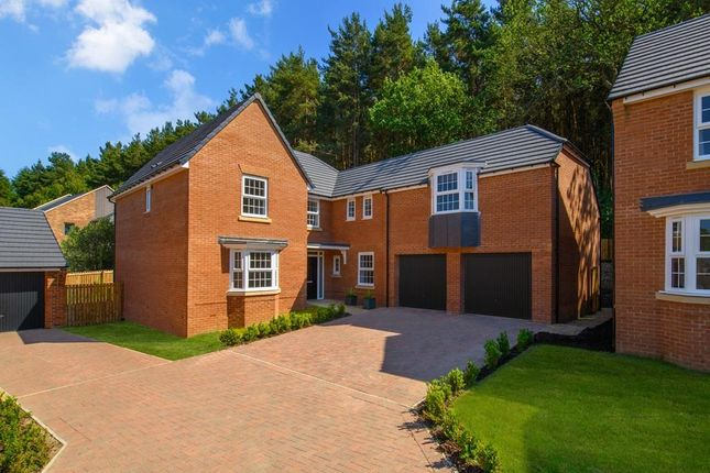 "Detached house for sale in ""Arbury"" at Craneshaugh Close, Hexham"