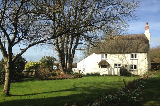 Thumbnail Detached house for sale in Thorn Moor, Broadwoodwidger, Lifton