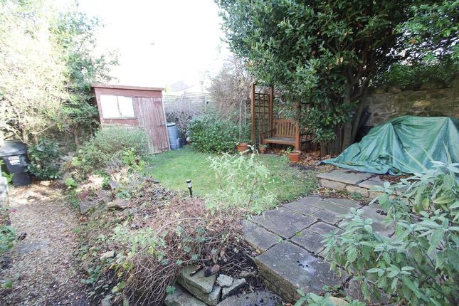 Up The Garden of Copse Road, Clevedon BS21