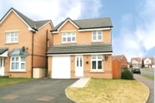 Thumbnail Detached house to rent in Mallace Avenue, Armadale, Bathgate