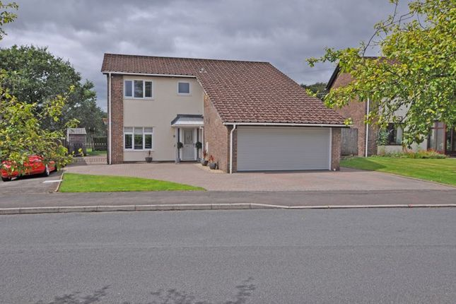Thumbnail Detached house for sale in Rare Opportunity, Wood Crescent, Newport