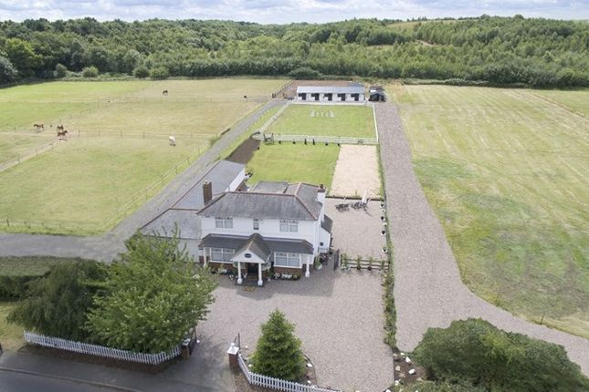 Thumbnail Equestrian property for sale in Edge Hill, Wood End, Atherstone