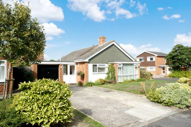 Thumbnail Detached bungalow to rent in Medina Gardens, Oakley, Hampshire
