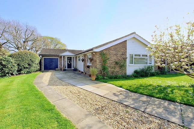 Thumbnail Detached bungalow for sale in Truro Close, Chichester