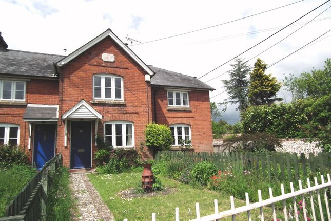 Thumbnail Terraced house to rent in Basingstoke Road, Old Alresford, Alresford