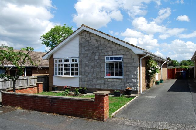 Thumbnail Detached bungalow for sale in Fulmar Crescent, Lisburn