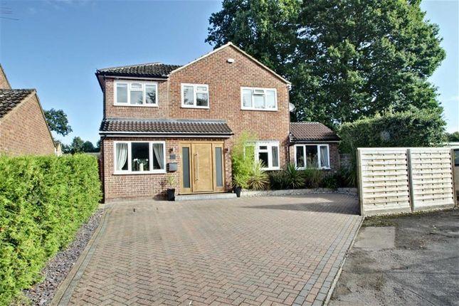Thumbnail Detached house for sale in Hunting Gate, Hemel Hempstead, Hertfordshire