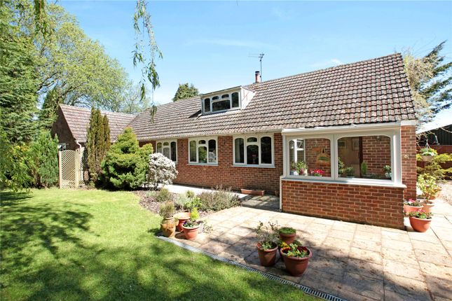 Thumbnail Detached bungalow for sale in Station Road, Semley, Shaftesbury, Wiltshire