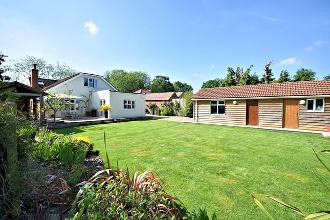 Thumbnail Property for sale in Norwich Road, Wymondham