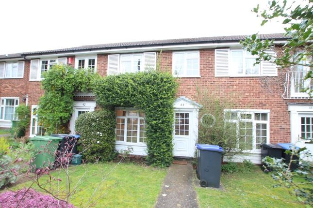 Thumbnail Terraced house to rent in Midhope Road, Hook Heath, Woking