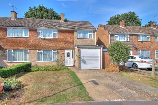 Thumbnail Semi-detached house for sale in Shamrock Close, Frimley, Camberley