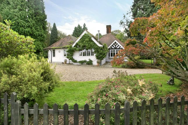 Thumbnail Bungalow to rent in Tilley Lane, Headley, Epsom