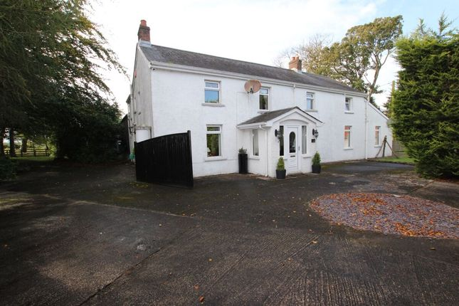Thumbnail Detached house for sale in Hydepark Road, Newtownabbey