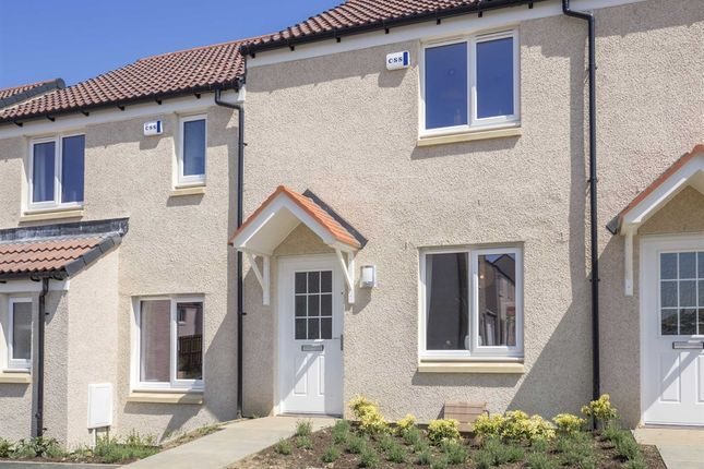 "Thumbnail Terraced house for sale in ""The Portree"" at Cotland Drive, Falkirk"