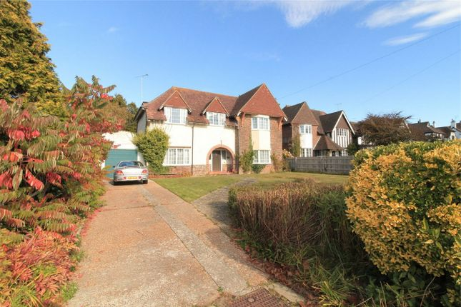 Thumbnail Detached house for sale in Collington Avenue, Bexhill On Sea, East Sussex