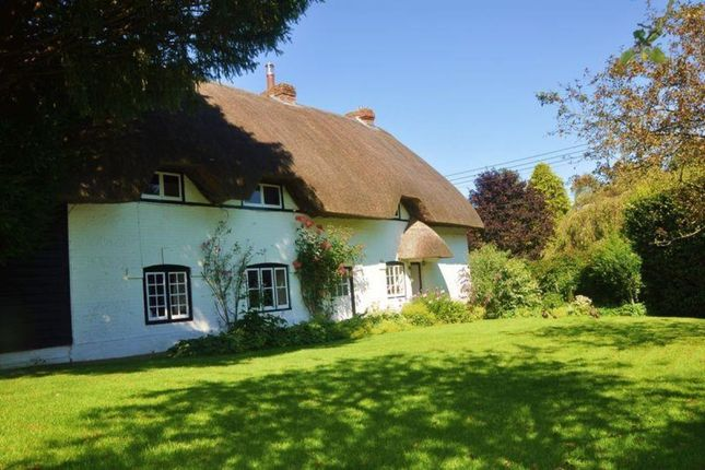 Thumbnail Detached house to rent in Thruxton, Andover