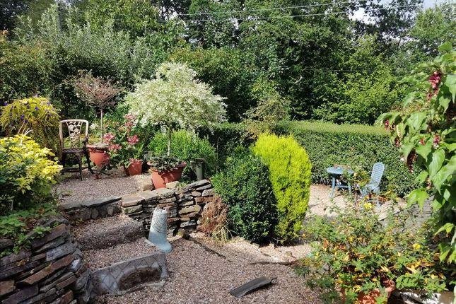 Front Garden of Gwenllian Terrace, Treforest, Pontypridd CF37