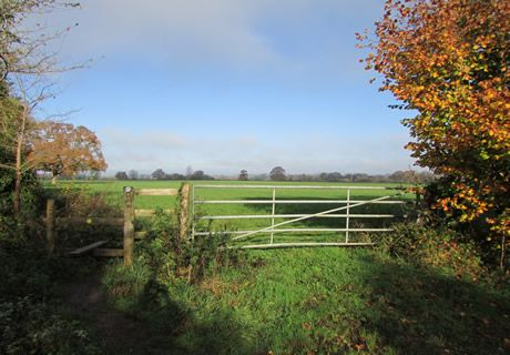 Land for sale in Mill Lane, Sturminster Marshall BH21