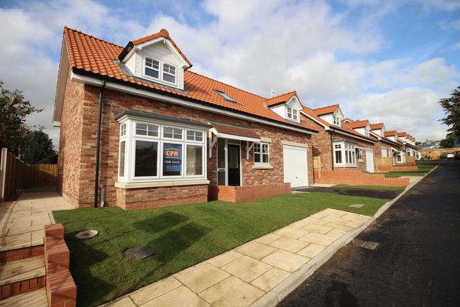 Thumbnail Detached house for sale in The Paddock, Racecourse Road, Scarborough