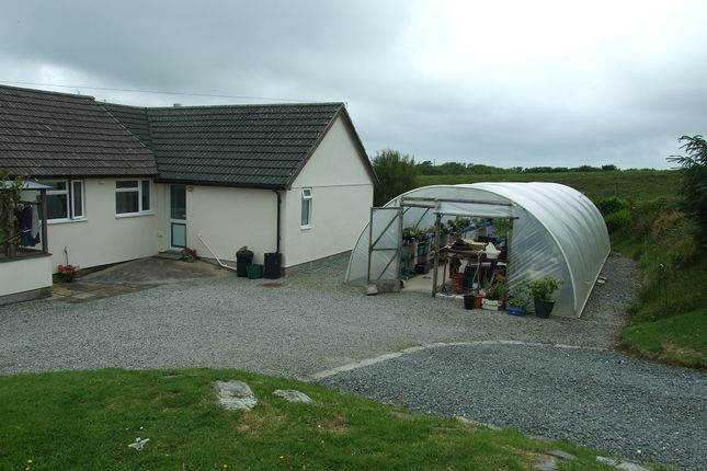 Thumbnail Detached bungalow for sale in Welcome, Bideford