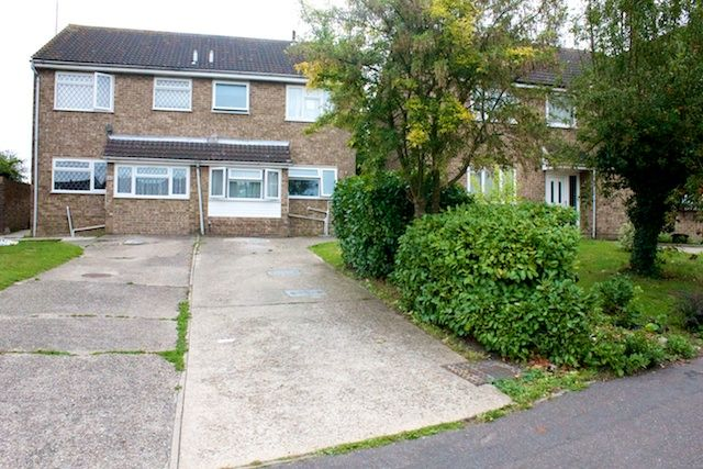 4 bed semi-detached house to rent in Forest Road, Colchester CO4