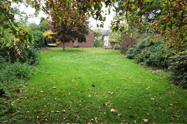 The Plot of Horsemans Green, Whitchurch SY13