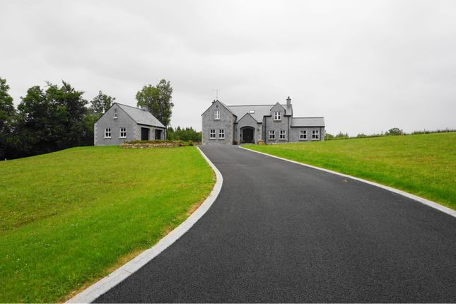 Thumbnail Detached house for sale in Mill Road, Enniskillen