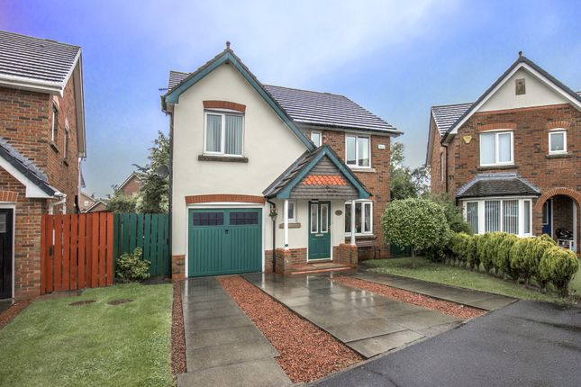 Thumbnail Property for sale in Trentham Gardens, Pegswood, Morpeth