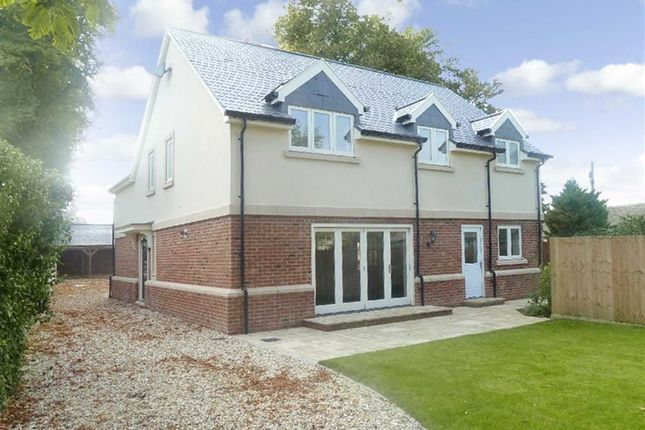 Thumbnail Detached house to rent in Pontings Close, Blunsdon, Wiltshire