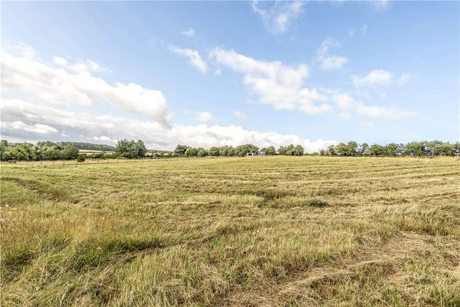 Thumbnail Terraced house for sale in Clenston Road, Winterborne Stickland, Blandford Forum, Dorset